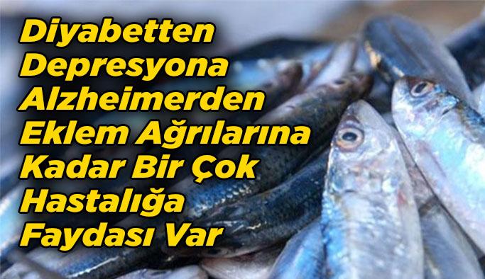 Balık Tüketmek İçin 10 Nedeniniz Var