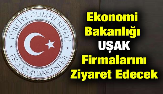 Ekonomi Bakanlığı Yetkilileri Uşak'lı Firmalar ile Görüşecek