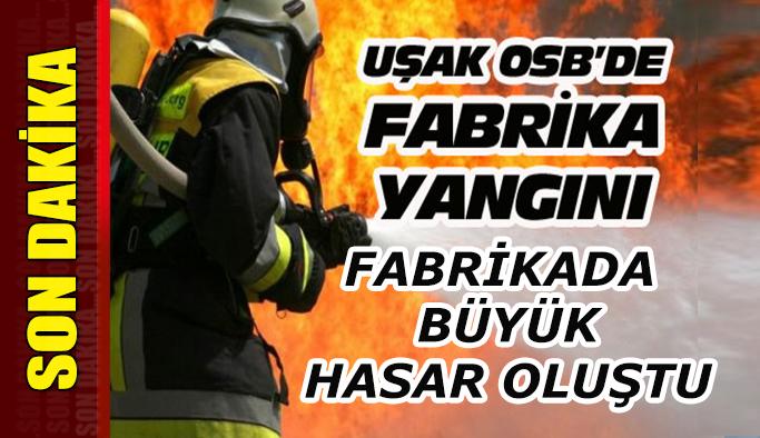 Uşak'ta OSB'de fabrikada yangını