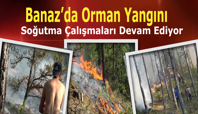 Banaz'da ki orman yangını soğutma çalışmaları devam ediyor