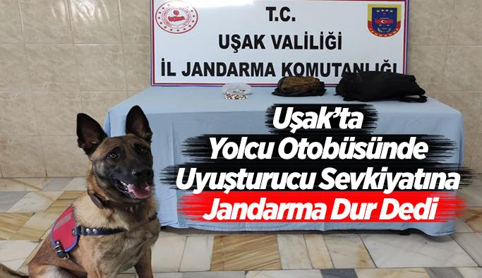 Uşak'ta Yolcu Otobüsünde Uyuşturucu Sevkiyatına Jandarma Dur Dedi