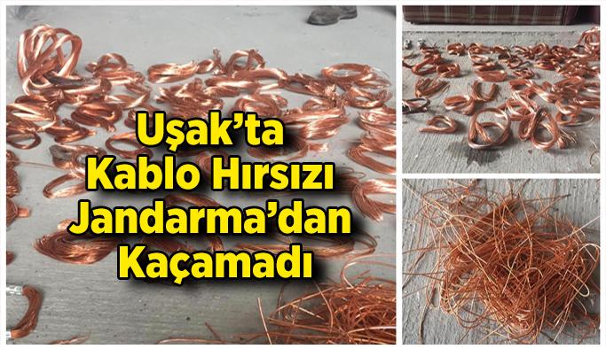 Uşak'ta Kablo Hırsızı Jandarma'dan Kaçamadı