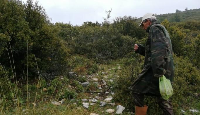 Kuzu göbeği bulmak için dağ, bayır arıyorlar