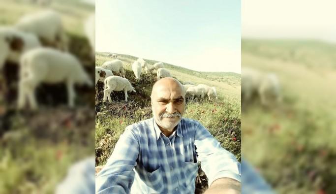 Uşak'ta koyun otlatmaya giden adam ölü bulundu
