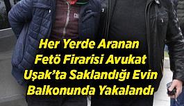 Her Yerde Aranan Fetö Firarisi Avukat Saklandığı Evin Balkonunda Yakalandı