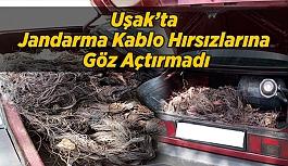 Uşak'ta Jandarma Kablo Hırsızlarına Göz Açtırmadı