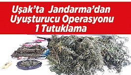 Uşak'ta  Jandarma'dan Uyuşturucu Operasyonu, 1 Tutuklama