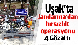 Uşak'ta Jandarma'dan  hırsızlık operasyonu