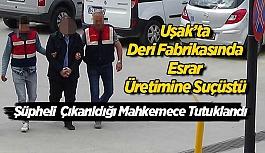 Uşak'ta Deri fabrikasında esrar üreten...