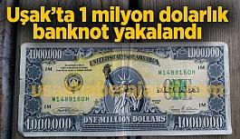 Uşak'ta 1 milyon dolarlık banknot...