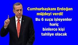 Erdoğan müjdeyi verdi! Bu 6 suçu işleyenler...