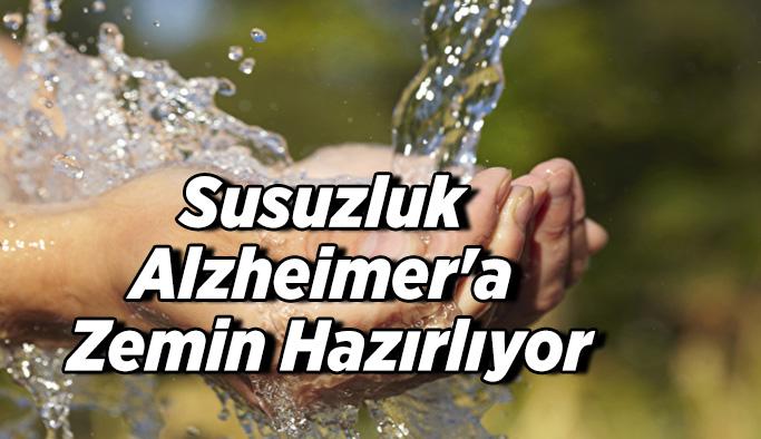 Susuzluk Alzheimer'a zemin hazırlıyor
