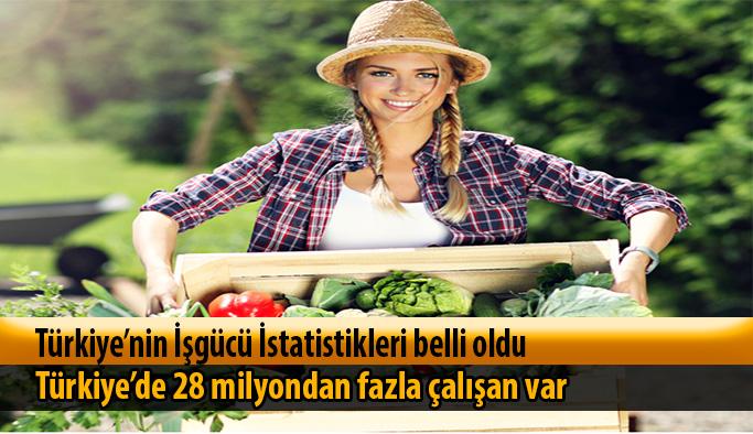 Türkiye'nin İşgücü İstatistikleri belli oldu