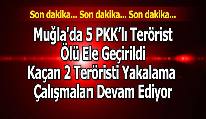 Muğla'da 5 PKK'lı terörist etkisiz hale getirildi