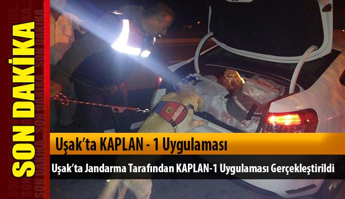 Uşak'ta Jandarma tarafından KAPLAN-1 uygulaması  gerçekleştirildi