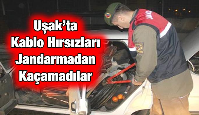 Uşak'ta Kablo Hırsızları Jandarmadan Kaçamadılar
