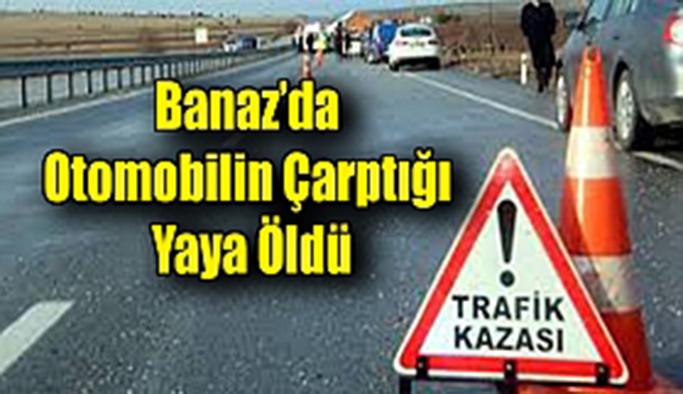 Banaz'da otomobilin çarptığı yaya öldü