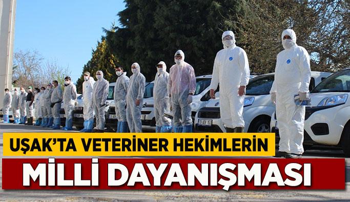 Uşak'ta Veteriner Hekimlerin Milli Dayanışması