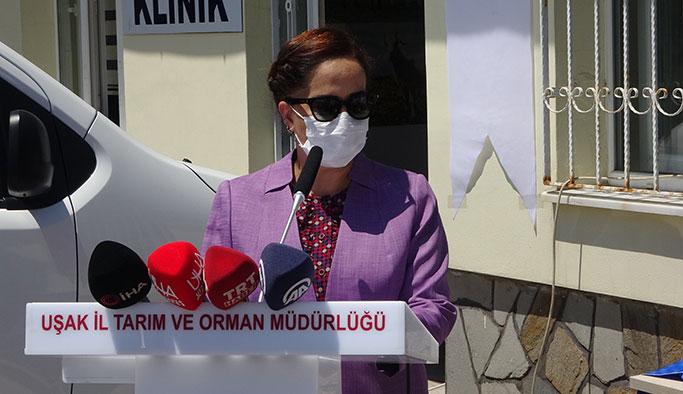 Uşak'ta hayvan ölümlerini azaltmaya yönelik projeler tanıtıldı
