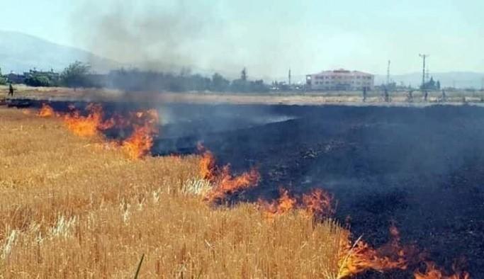 """""""Anız yangını bir doğa katliamıdır"""""""