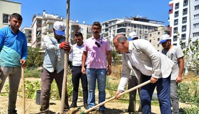 Başkan Kaya Sandıklı parkındaki çalışmaları inceledi