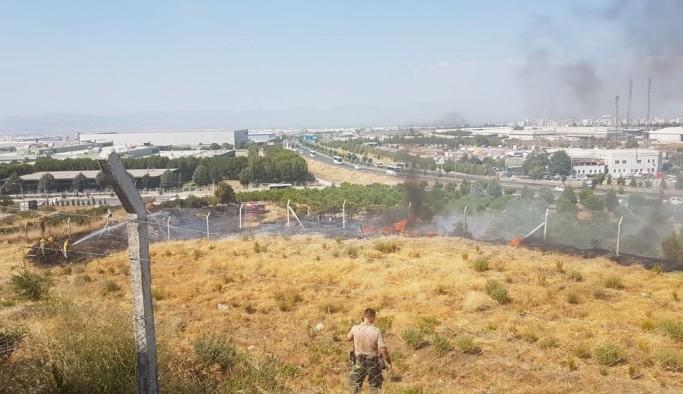 Manisa'da otluk alanda çıkan yangın korkuttu