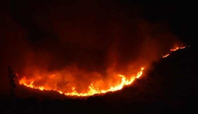 Urla'da otluk alanda korkutan yangın