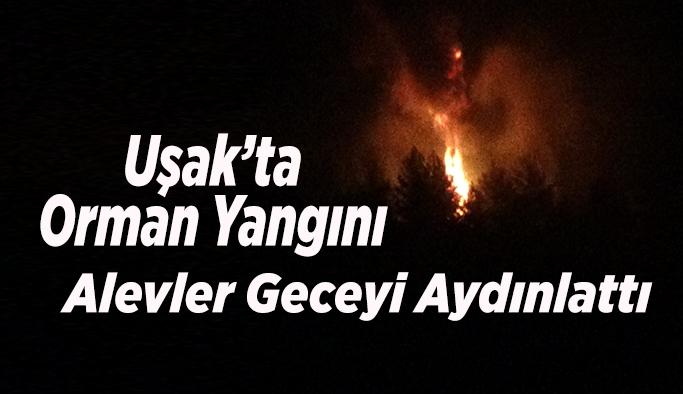 Uşak'ta Orman Yangını, Alevler Geceyi Aydınlattı