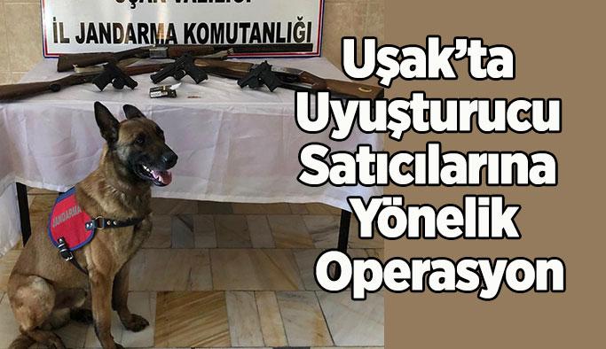 Uşak'ta Jandarmadan Uyuşturucu Satıcılarına Yönelik Operasyon