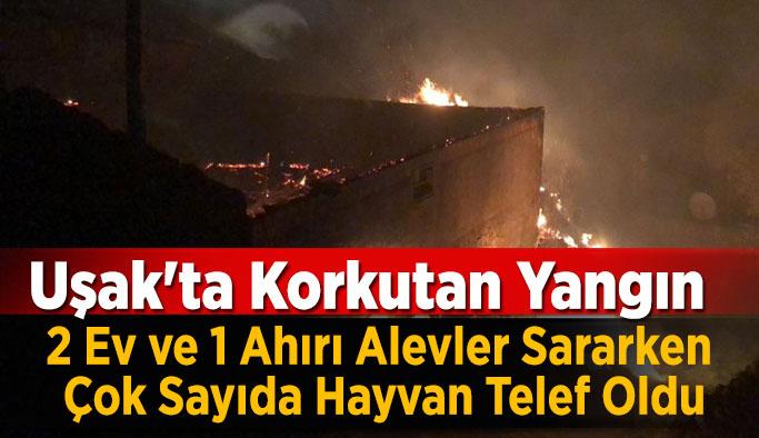Uşak'ta Korkutan Yangın 2 Ev ve 1 Ahırı Alevler Sararken Çok Sayıda Hayvan Telef Oldu