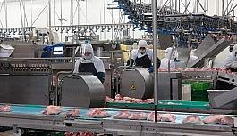 Gedik Piliç'te 1 milyar dolarlık ihracat