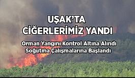 Uşak´taki orman yangında soğutma çalışmalarına başlandı