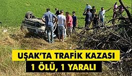 Uşak'ta Trafik Kazası; Otomobil Tarlaya...