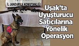 Uşak'ta Jandarmadan Uyuşturucu Satıcılarına...